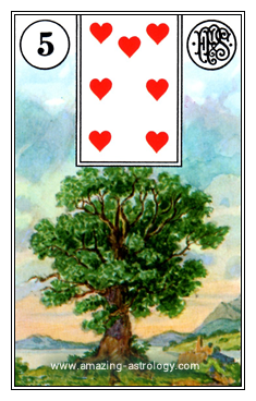 Lenormand Cards Meaning 05 Tree Card