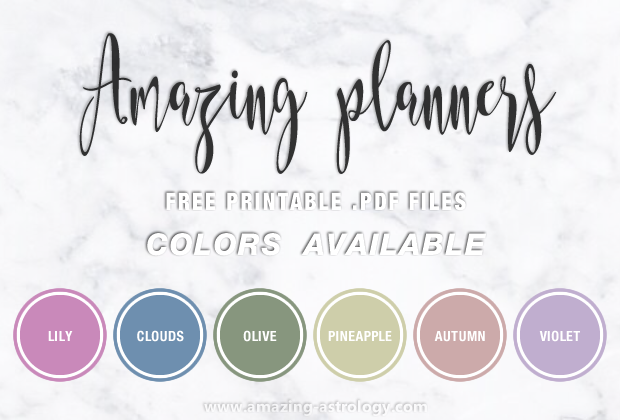 Printable Planners (.pdf) for FREE